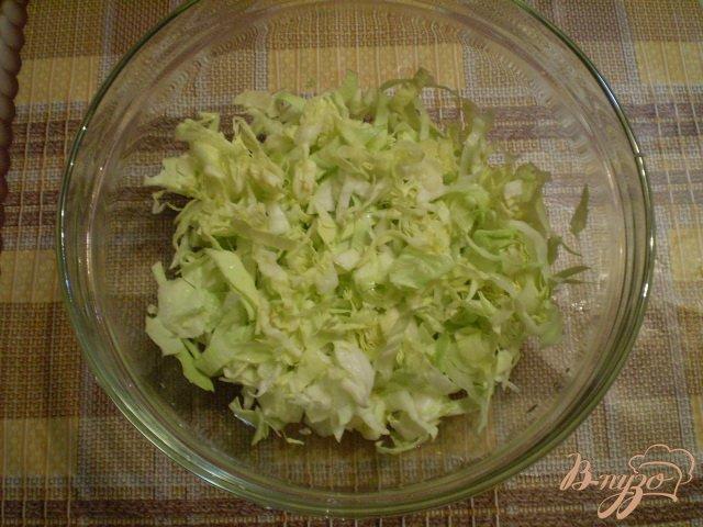 Фото приготовление рецепта: Овощной салат с яблоком и майонезом шаг №2