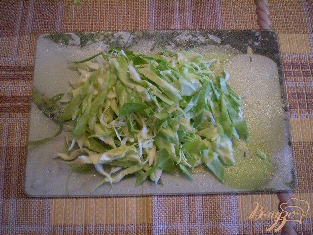 Фото приготовление рецепта: Борщ весенний с крапивой шаг №7