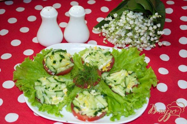 Рецепт Закусочные помидоры с тунцом под шубой