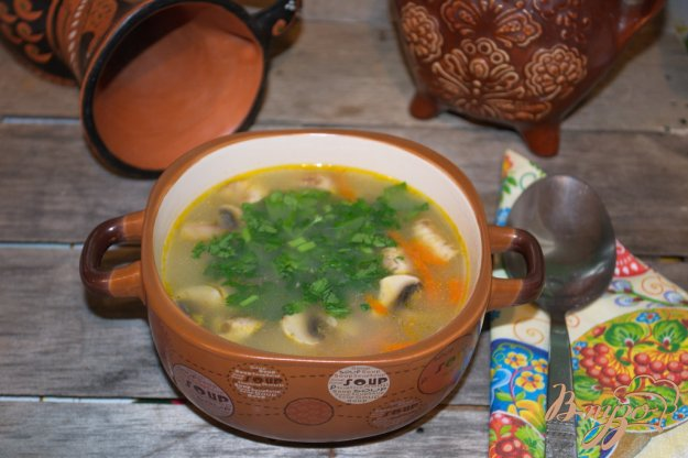 фото рецепта: Овсяный суп с грибами и курицей
