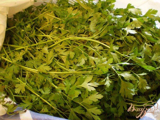 Фото приготовление рецепта: Заготовка зелени на зиму шаг №1