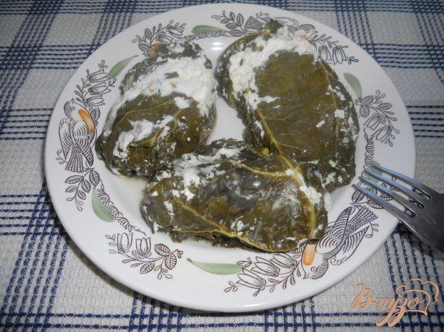 Рецепт Голубцы в листьях ревеня