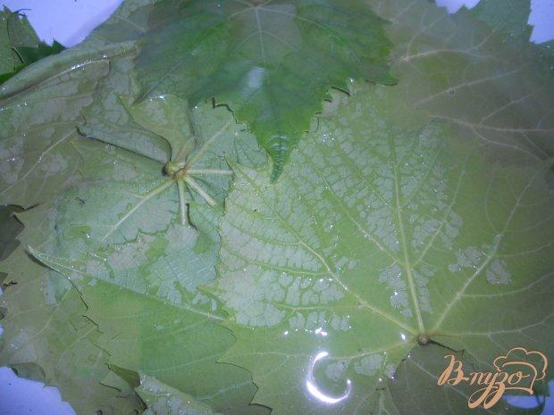 Мини-голубцы в виноградных листьях