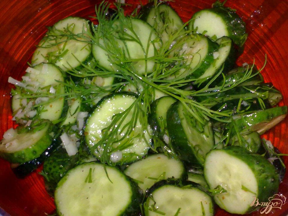 Фото приготовление рецепта: Огурцы с чесночком и укропом шаг №5