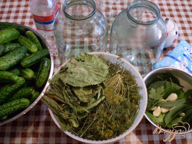 Фото приготовление рецепта: Огурцы консервированные шаг №3