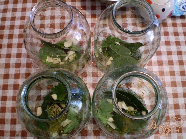 Фото приготовление рецепта: Огурцы консервированные шаг №4