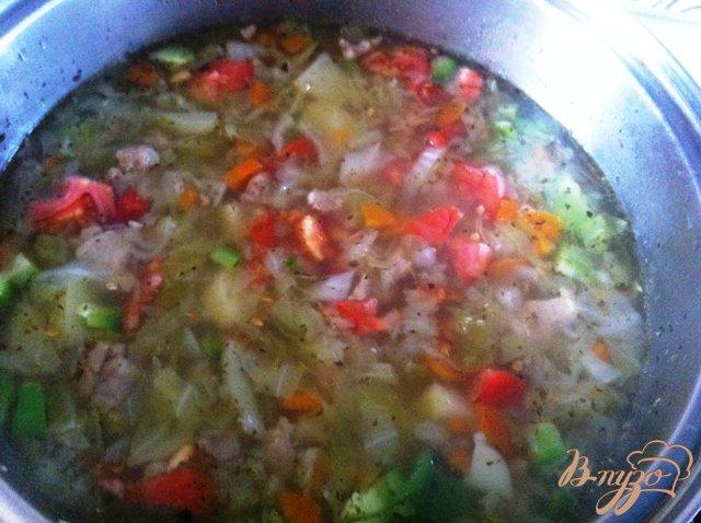 Фото приготовление рецепта: Щи из свежей капусты шаг №9