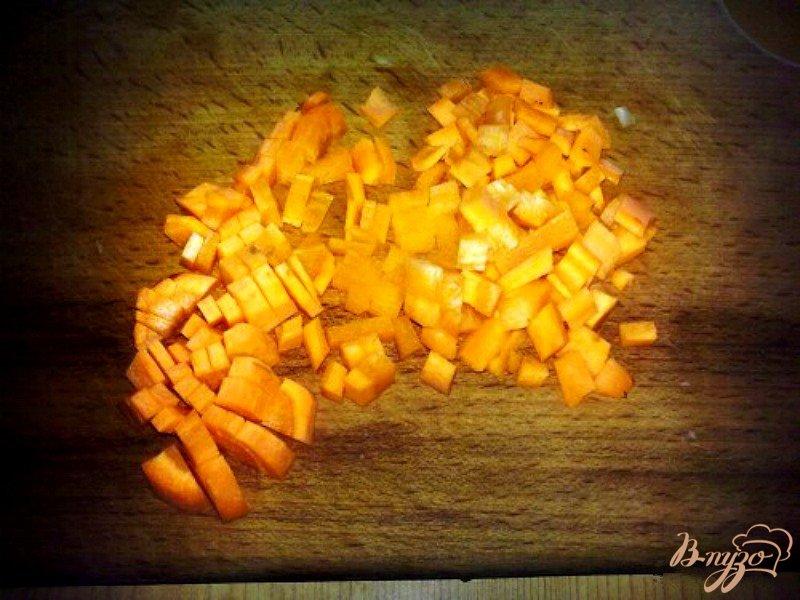 Фото приготовление рецепта: Самосы с курицей и рисом шаг №3