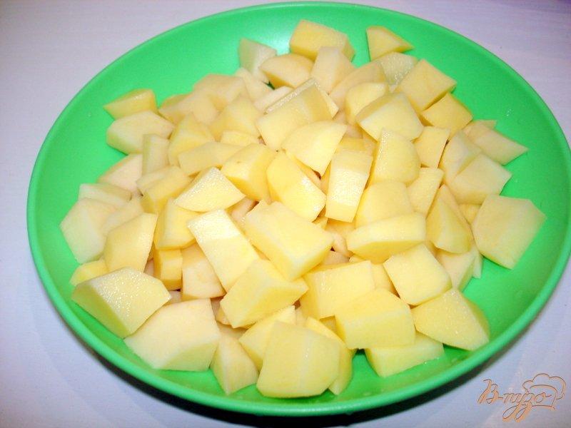 Фото приготовление рецепта: Суп из капусты сырочками шаг №2