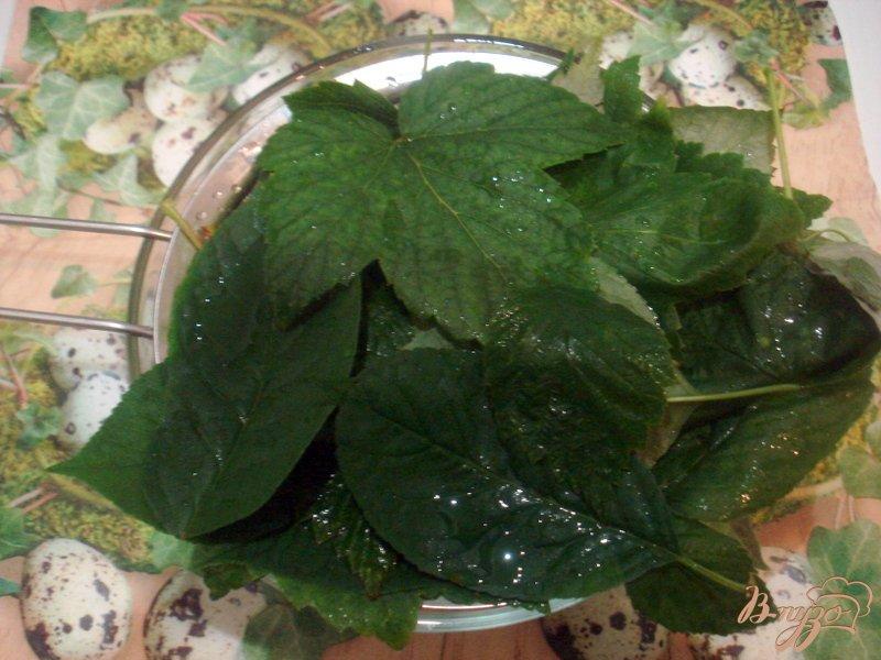 Фото приготовление рецепта: Ликёр ягодный шаг №1