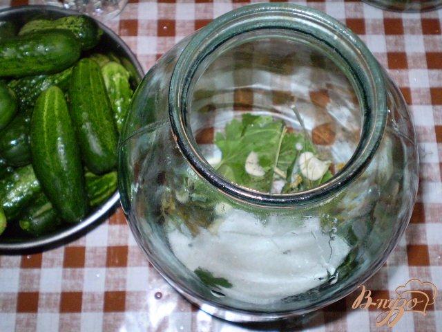 Фото приготовление рецепта: Огурцы и помидоры консервированные шаг №2