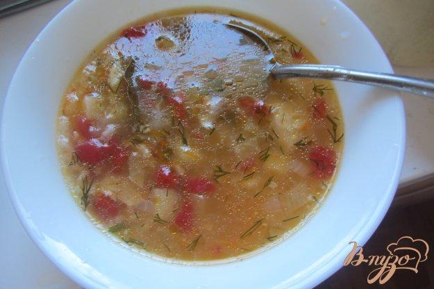 фото рецепта: Суп рисовый на индейки с помидорами без зажарки