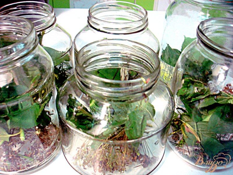 Фото приготовление рецепта: Огурцы солёные шаг №2