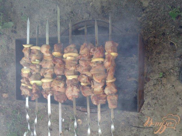 Рецепт Свиной шашлык в маринаде из яблочного уксуса