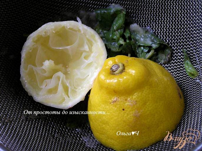 Фото приготовление рецепта: Дынный лимонад с мятой шаг №3