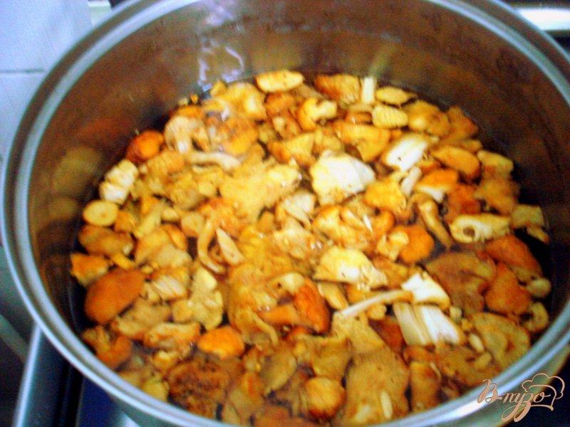 Фото приготовление рецепта: Лисички с вином и со сливками шаг №2