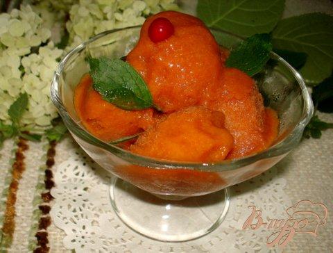 Сорбет абрикосово дынный