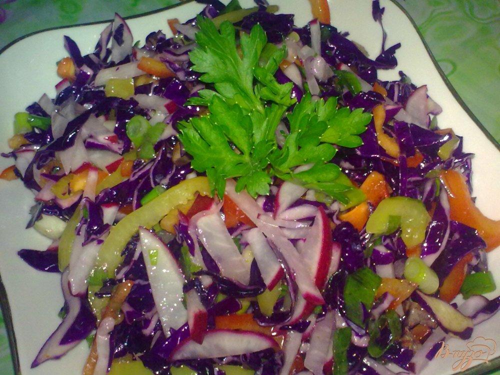 Фото приготовление рецепта: Салат из краснокочанной капусты с редисом шаг №6