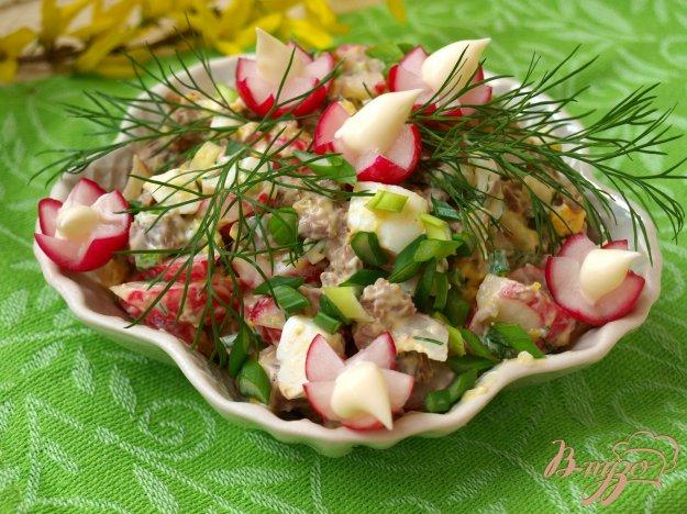 Рецепт Мясной салат с редисом