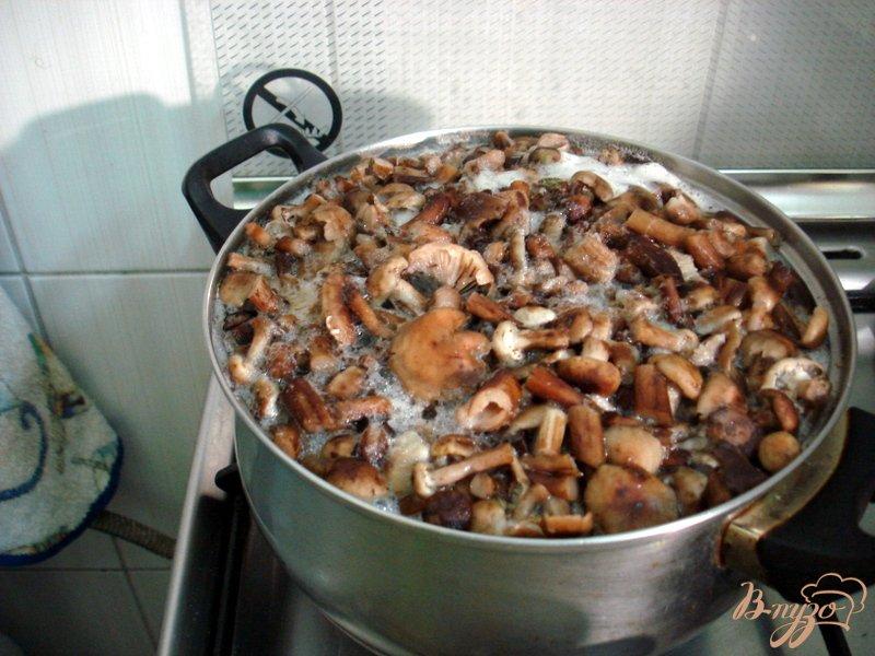 Фото приготовление рецепта: Опята со свининой в сметанном соусе шаг №4