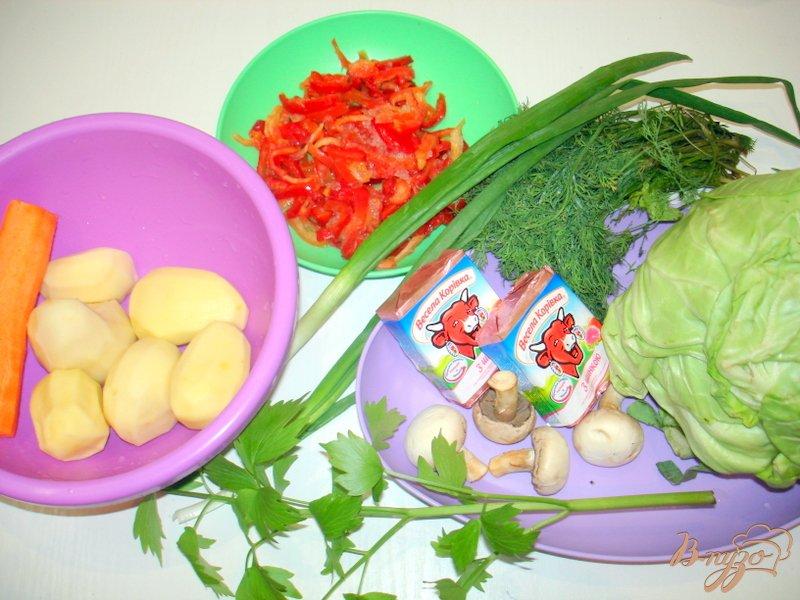 Фото приготовление рецепта: Суп из капусты с сырочками шаг №1