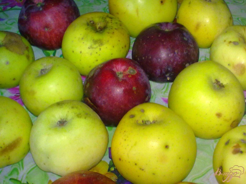 Фото приготовление рецепта: Яблочное варенье с корицей и клюквой шаг №1
