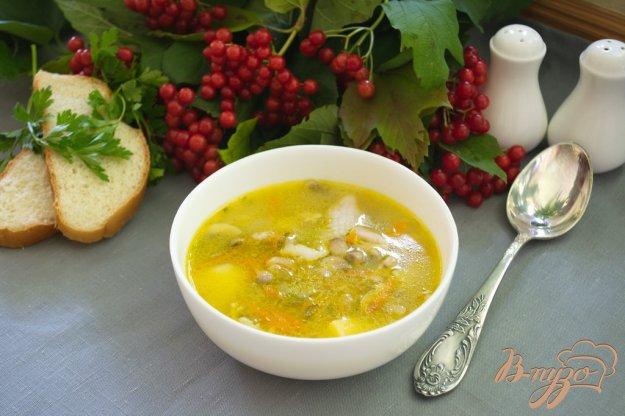 Рецепт Густой рассольник с курицей и грибами