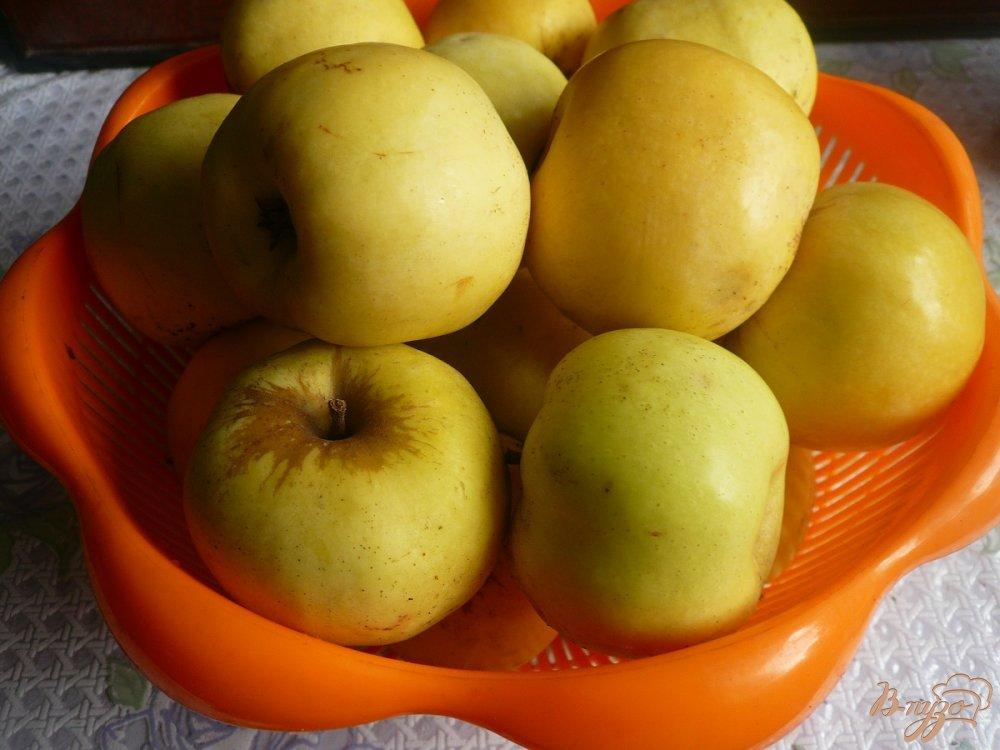 Фото приготовление рецепта: Моченые яблоки шаг №1
