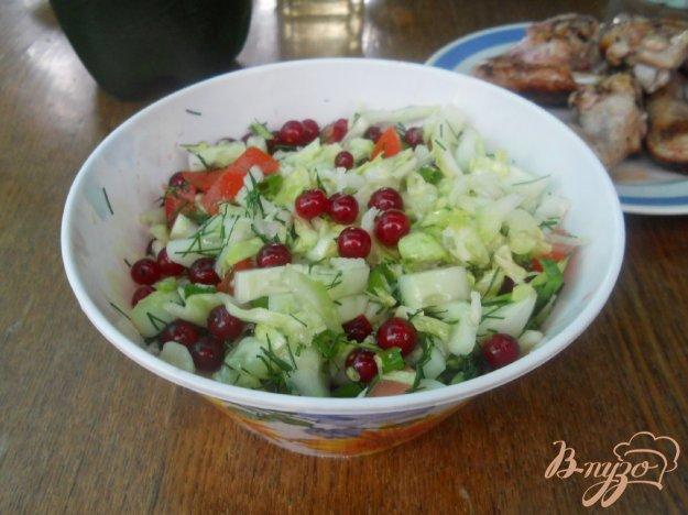 Рецепт Капустный салатик с красной смородиной