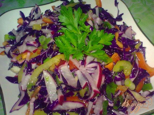 Салат из краснокочанной капусты с редисом