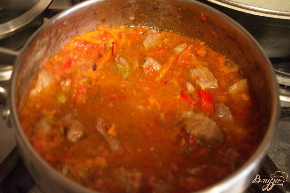 Фото приготовление рецепта: Рагу из говядины без картофеля шаг №5