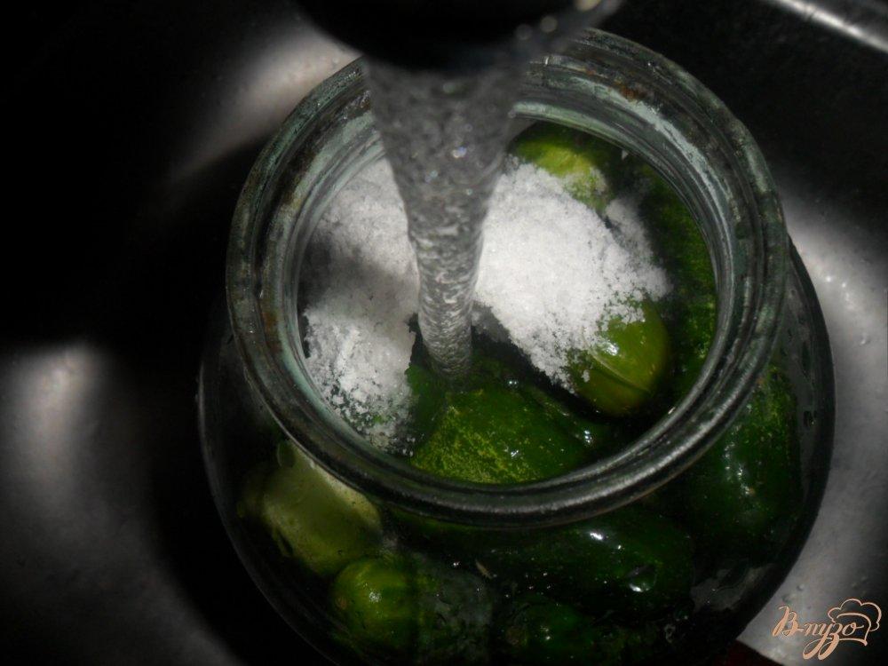 Фото приготовление рецепта: Малосольно- соленные огурцы шаг №5