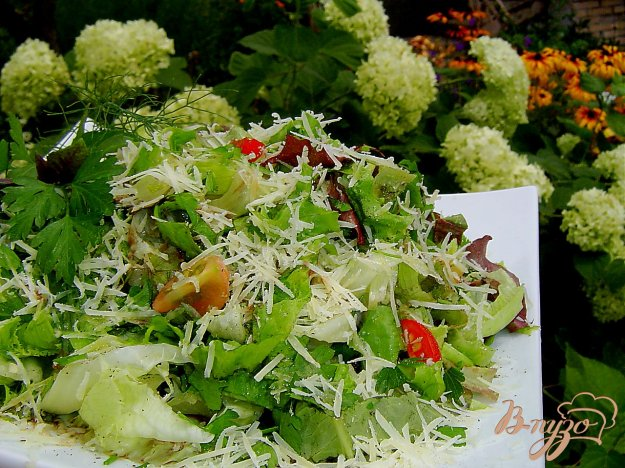 Рецепт Зеленый салат с помидорами черри и пармезаном