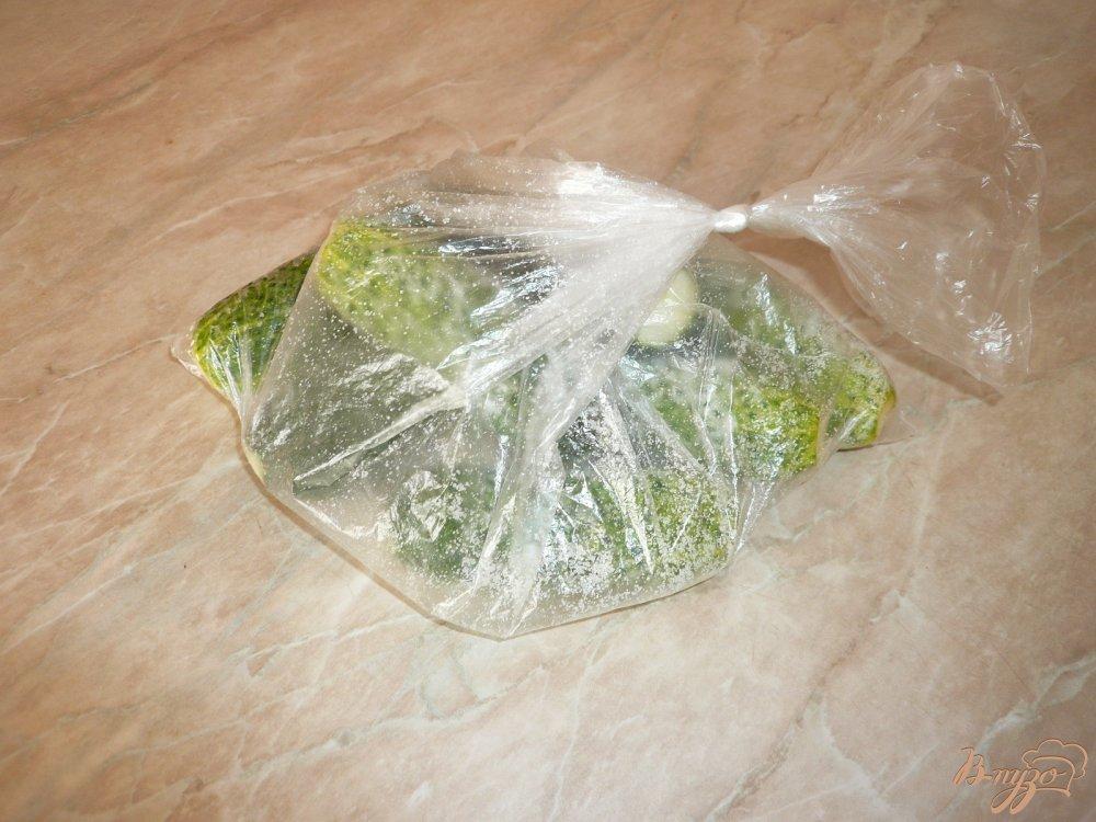 Фото приготовление рецепта: Малосольные огурчики в пакете шаг №5