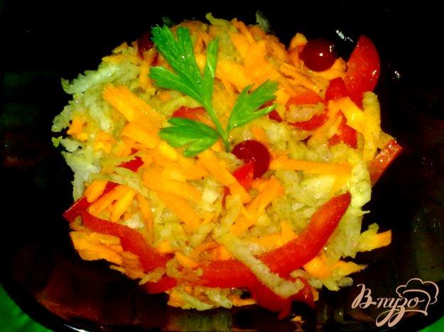Рецепт Салат из дайкона с красной смородиной