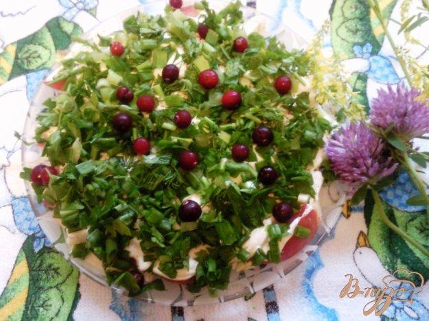 Рецепт Салат из помидоров и яиц