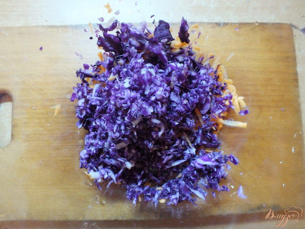 Фото приготовление рецепта: Салат из краснокочанной капусты шаг №2