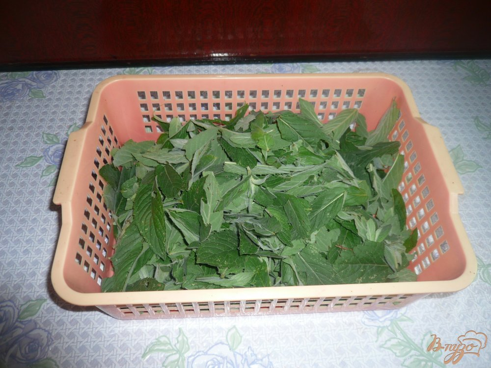 Фото приготовление рецепта: Домашний мятный сироп шаг №1