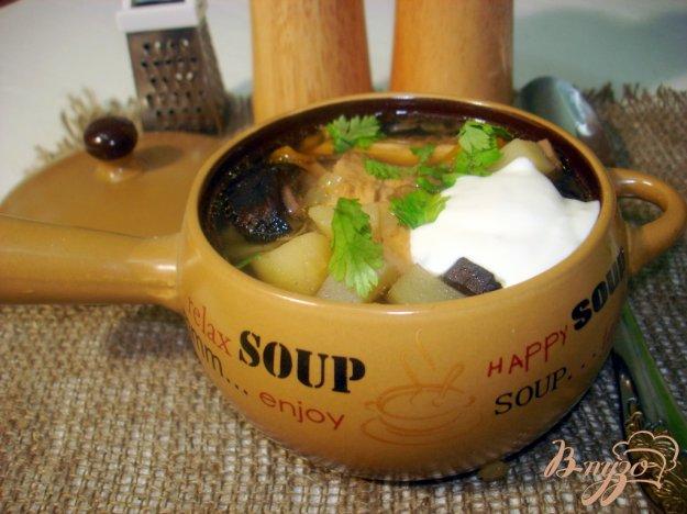 фото рецепта: Суп с лесными грибами на курином бульоне