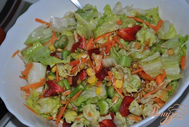 фото рецепта: Салат-микс с кукурузой и пророщенной чечевицей