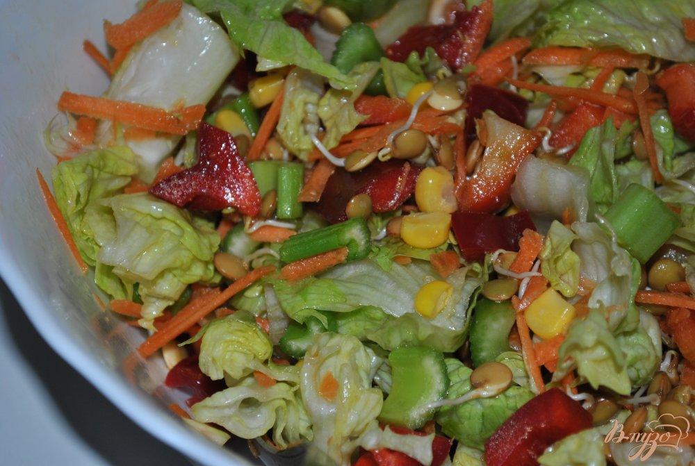 Фото приготовление рецепта: Салат-микс с кукурузой и пророщенной чечевицей шаг №8
