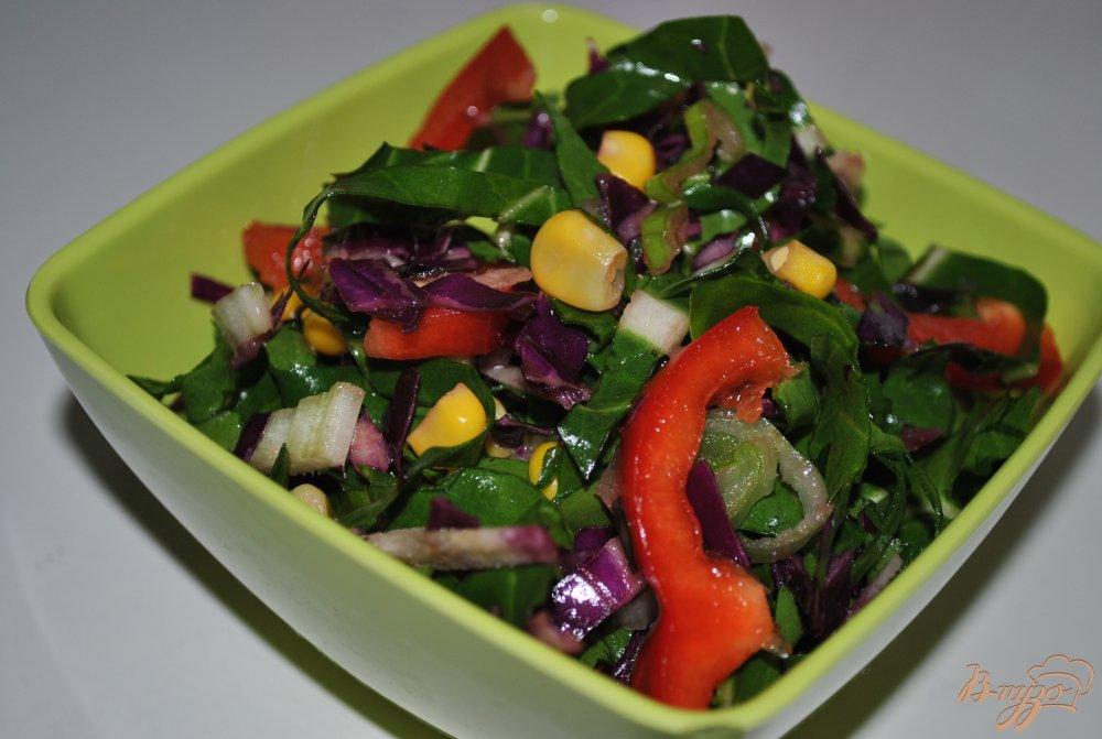 салат с краснокочанной капусты