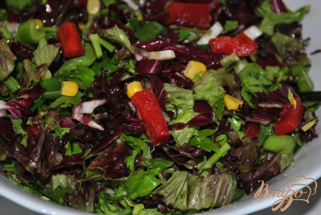 фото рецепта: Салат с красной капустой