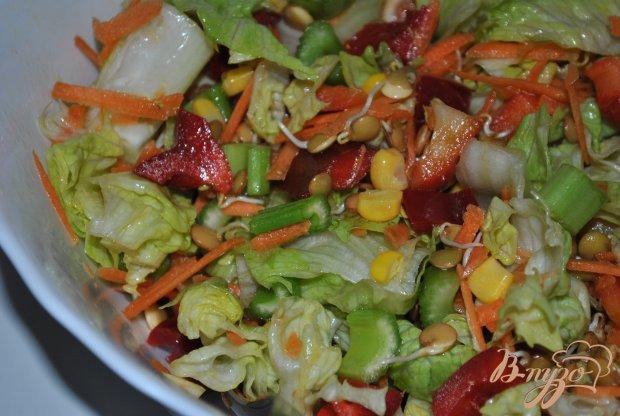 Салат-микс с кукурузой и пророщенной чечевицей