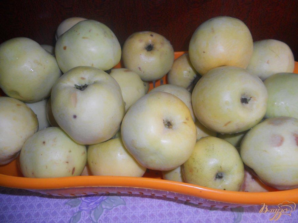 Фото приготовление рецепта: Помидоры резаные на зиму шаг №2