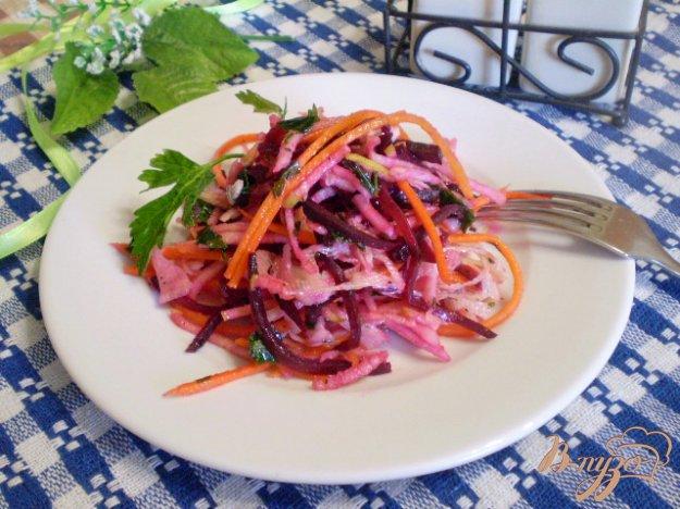 фото рецепта: Салат овощной с редькой и яблоком