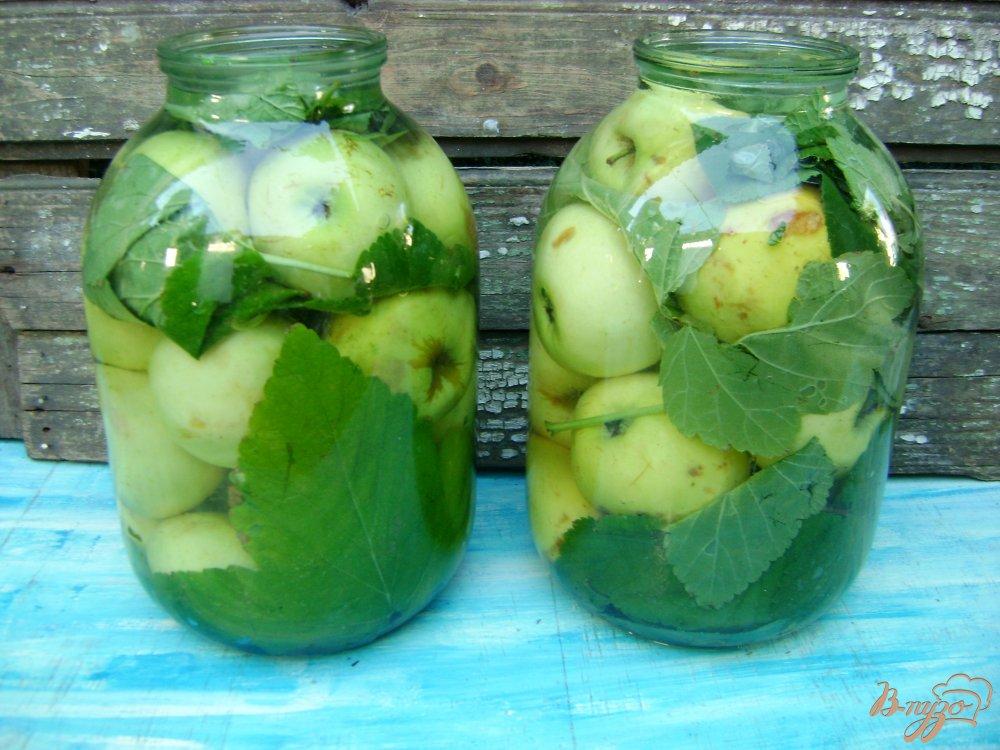 Как в домашних условиях приготовить моченые яблоки