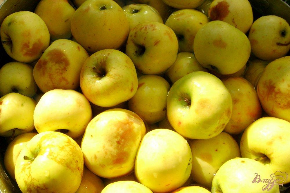 Фото приготовление рецепта: Яблоки мочёные шаг №1