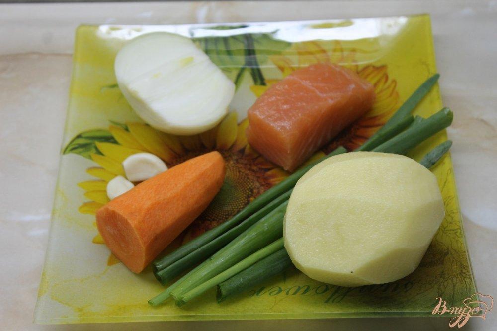 Фото приготовление рецепта: Уха рыбацкая шаг №1