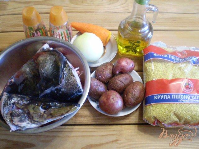 Фото приготовление рецепта: Суп рыбный из головы щуки и толстолоба шаг №1
